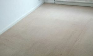 Domestic carpet cleaning. Cleaners in Bristol and Swindon