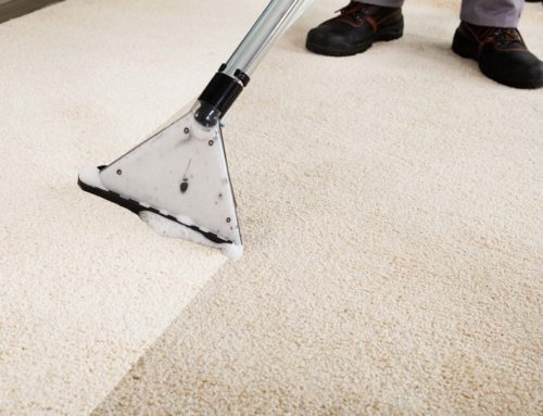 Why Every Carpet Gets Dirty With Use