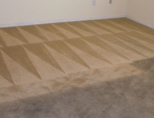 Tips on How to Best Clean Your Carpet Routinely