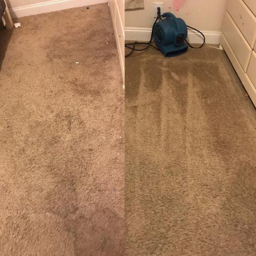 Carpet Cleaning Swindon